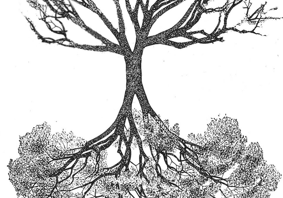 With Roots Above and Branches Below